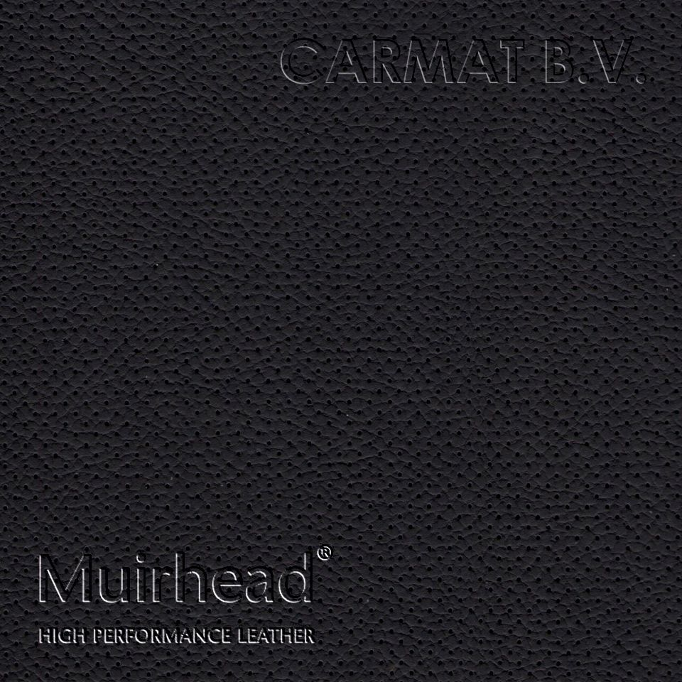 Samplebook Design: Leather Hide Muirhead Grampian Black Perforated