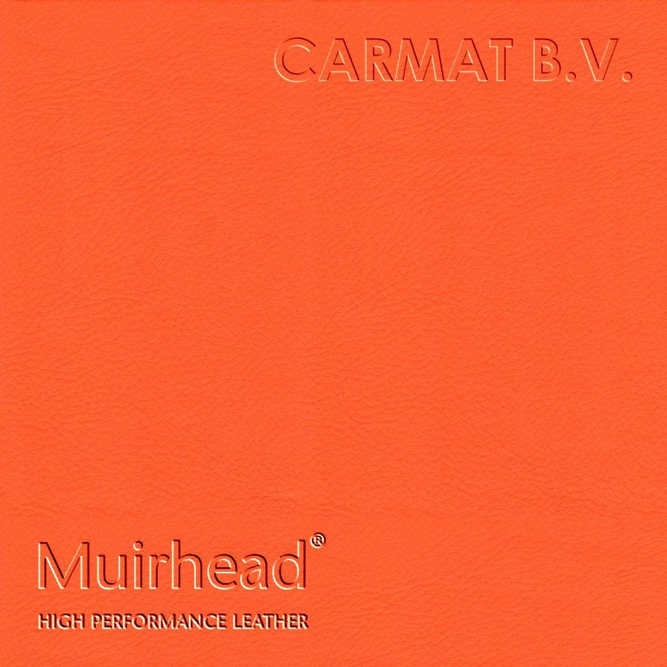 Samplebook Design: Leather Hide Muirhead Cairngorm Jaffa