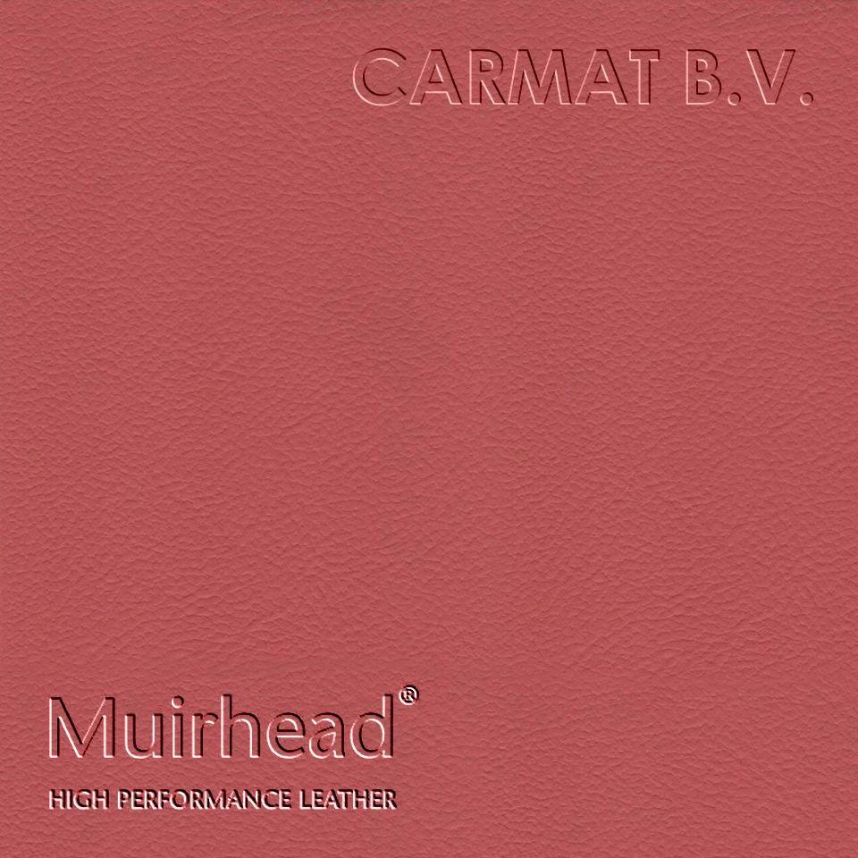 Samplebook Design: Leather Hide Muirhead Cairngorm Pomegranate